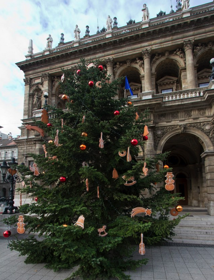 Christmas tree in front of Budapest Opera