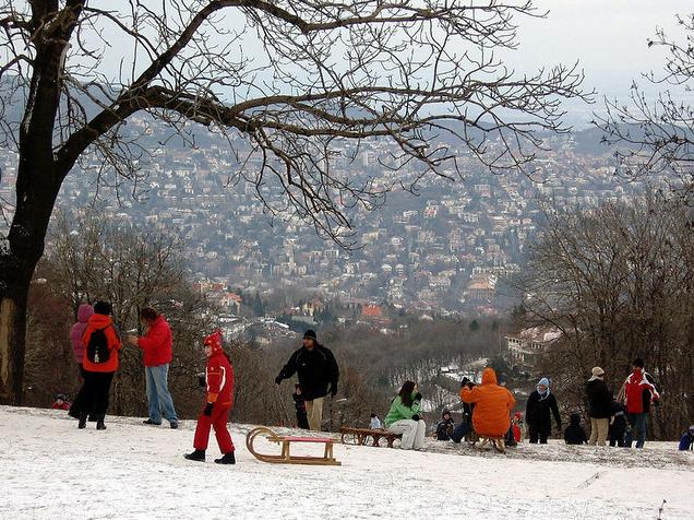 Normafa Hill