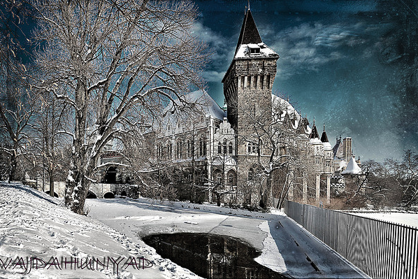 Vajdahunyad Castle Budapest in winter